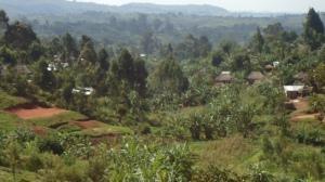 Northeast Democratic Republic of Congo