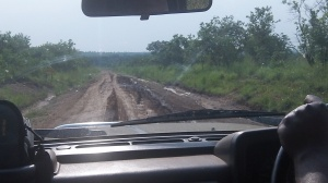 Road from Gulu to Moyo