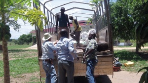 Loading the cassava at RAU