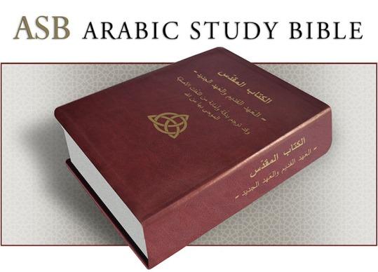 bibledown750